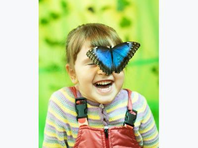 """Выставка """"Парк Живых Бабочек""""! в городе Лиски"""